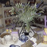 Lavender area display