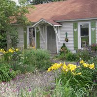 Cottage Garden in July