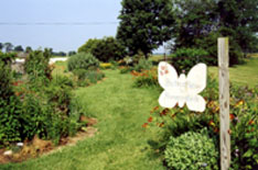 The Butterfly Garden at Carolee's Herb Farm